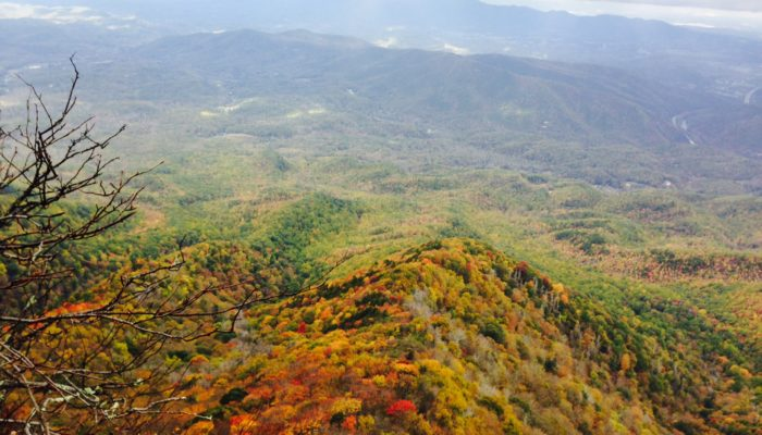 Smokies Fall Color Mt Cammerer photo by Kathryn Robertson