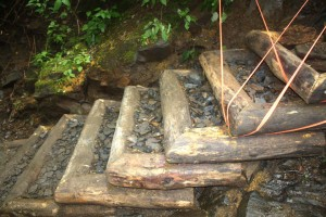 Log and stone stairs on Chimney Tops Trail