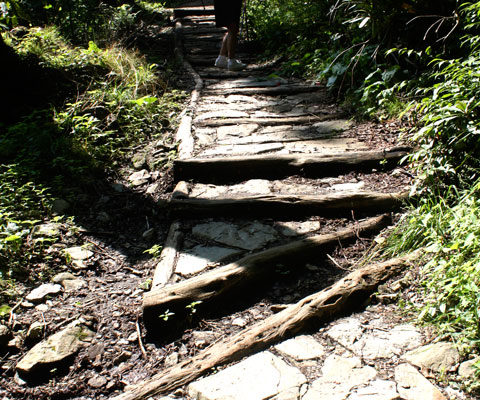 Wood and rocks stairs, Chimney Tops Trail, Phase II. Photo by Julie Dodd