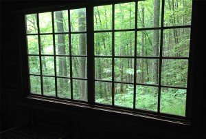 View from window of Avent Cabin