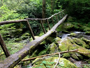 Log footbridge on way to Avent Cabin