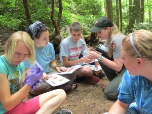 Ranger Carlin Fenn provides instruction on dragonfly larvae