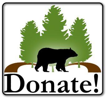 FOTS donate button