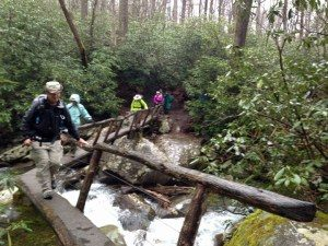 log bridge crossing Porters Creek