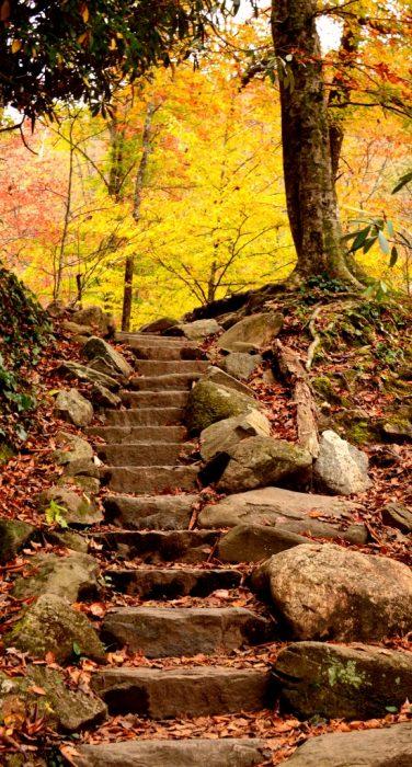 fall-stairs-by-sam-hobbs