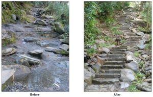 Chimney Tops Trail before/after