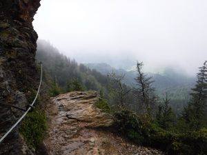 Alum Cave Trail cable handrail