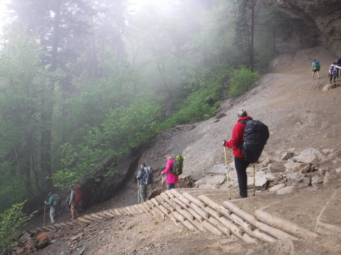 Alum Cave Trail - cable handrails