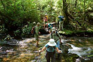 Boogerman Trail water crossing