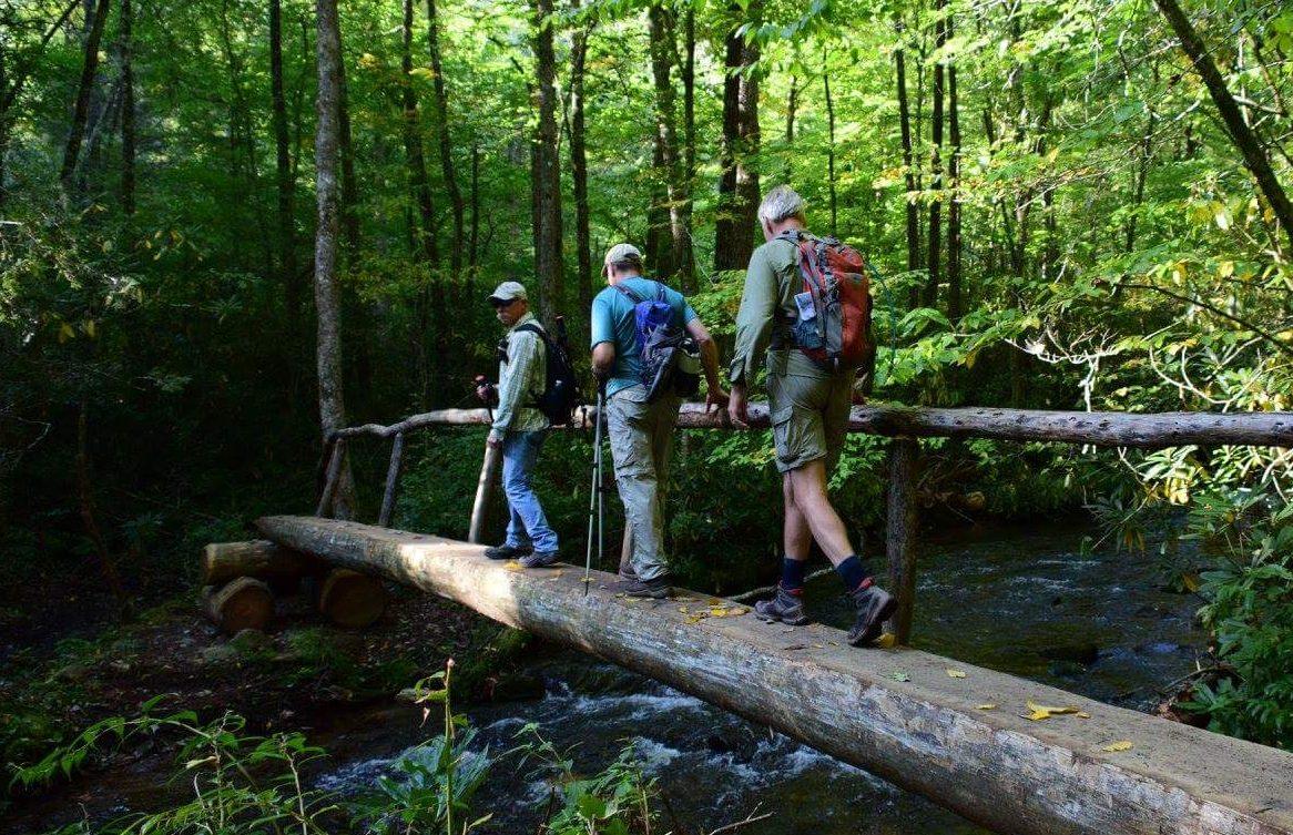 log bridge on Boogerman Trail