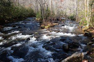 Forney Creek - photo by Linda Spangler