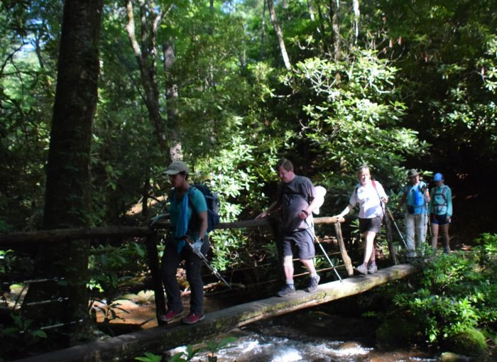 Hikers hiking to Gregory Bald - photo by Linda Spangler