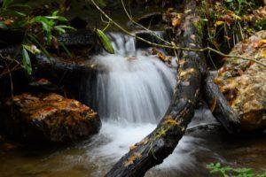 waterfall along Flat Creek Trail