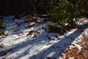December Classic Hike 2018 snow - photo by Linda Spangler
