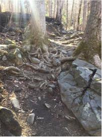 Rainbow Falls Trail - before restoration