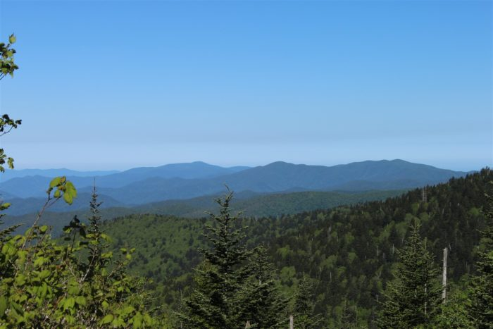 GSMNP webcam Image from Clingsman Dome