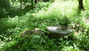 Grist mill stones from Jesse McGee's grist mill