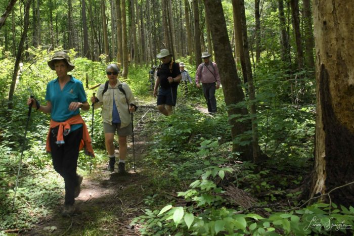 hikers on Twin Creeks Trail