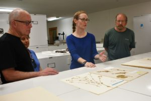 Miranda Zwingelberg, a Natural History Technician Intern at Great Smoky Mountains National Park, in the Curation Workroom