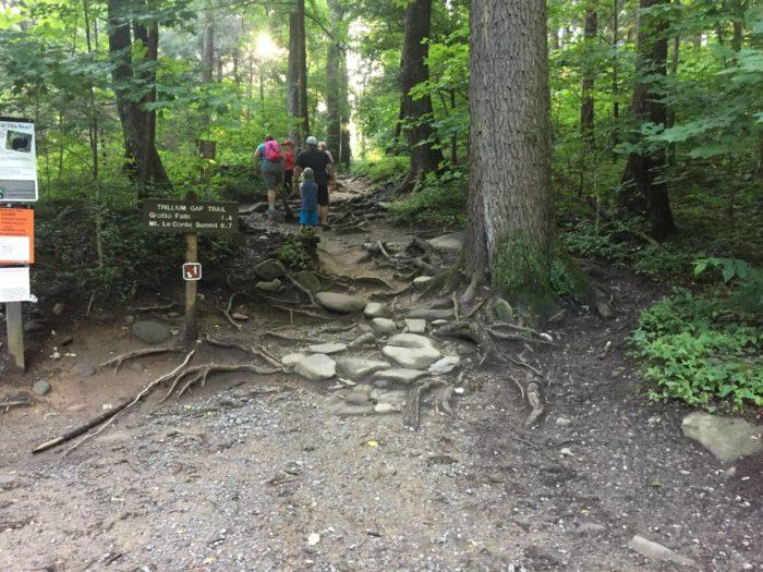 Trillium Gap Trail before restoration - photo by Josh Shapiro