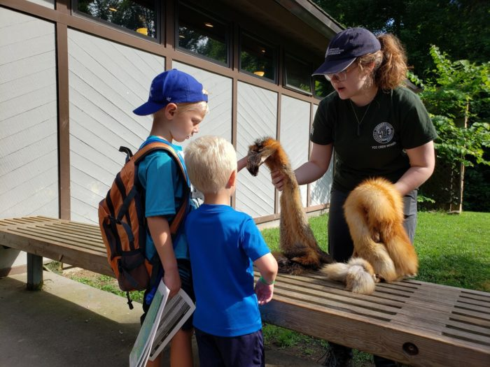 GSMNP intern with visitors at Sugarlands Visitors Center