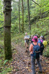 hikers on Hyatt Ridge Trail