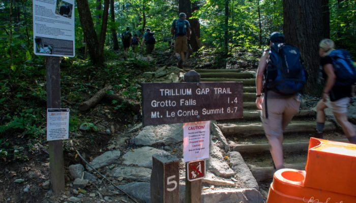Trillium Gap Trail sign