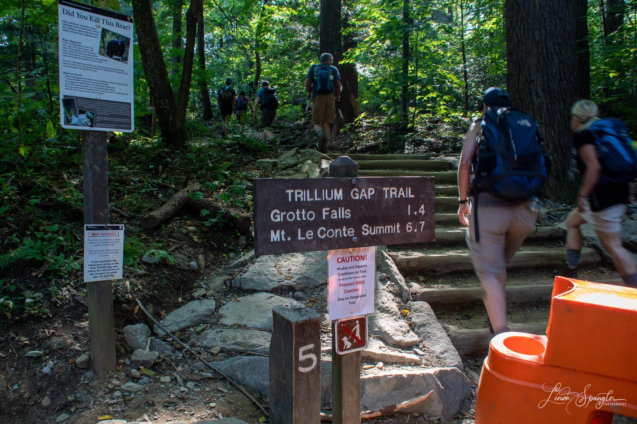 Trillium Gap Trail sign