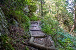 stairs on Trillium Gap Trail