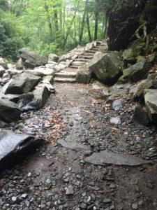 Trillium Gap after