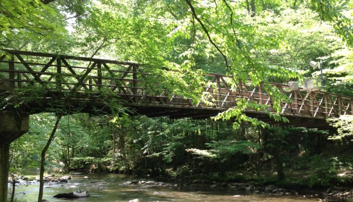 Pedestrian bridge on Gatlinburg Trail