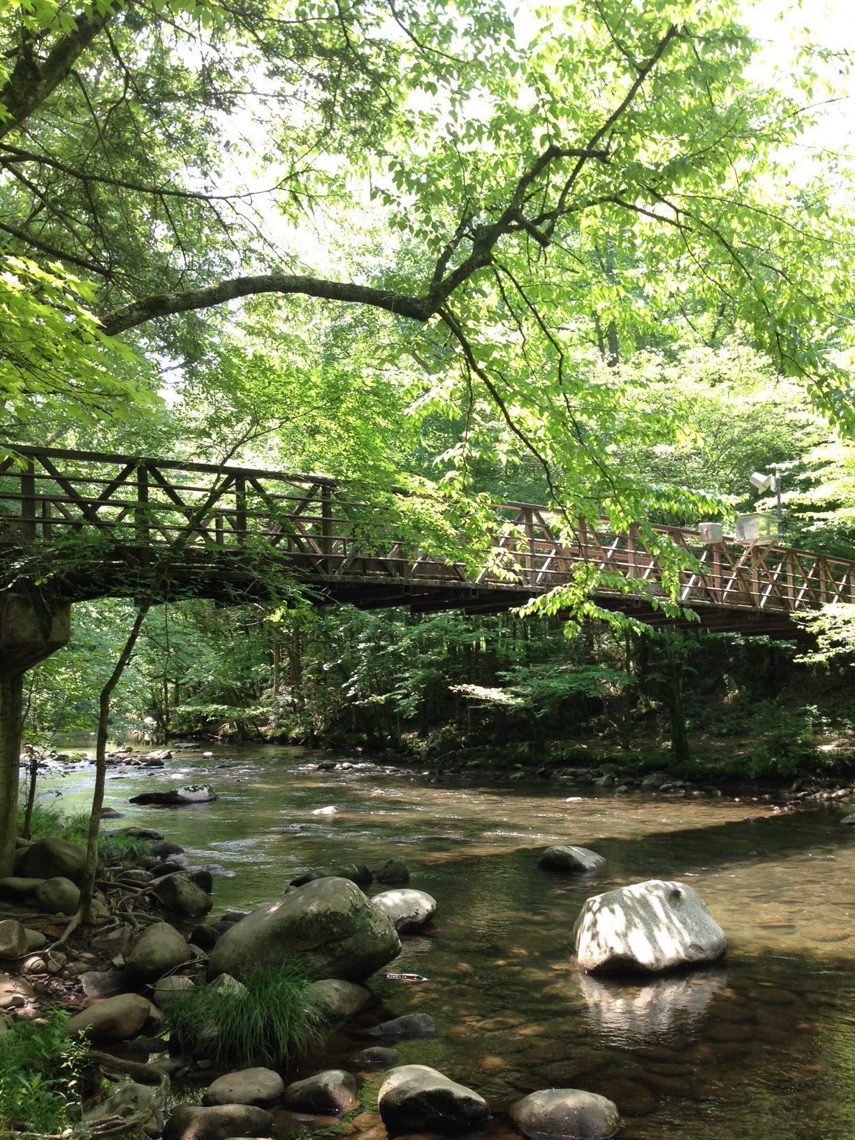 Pedestrian bridge on Gatlinburg Trail