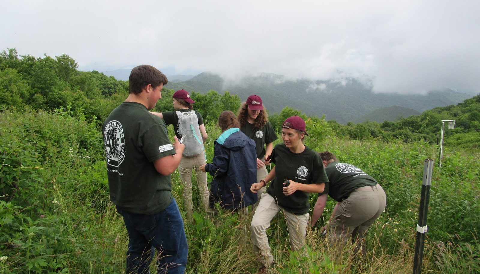 GSMNP interns in ozone garden
