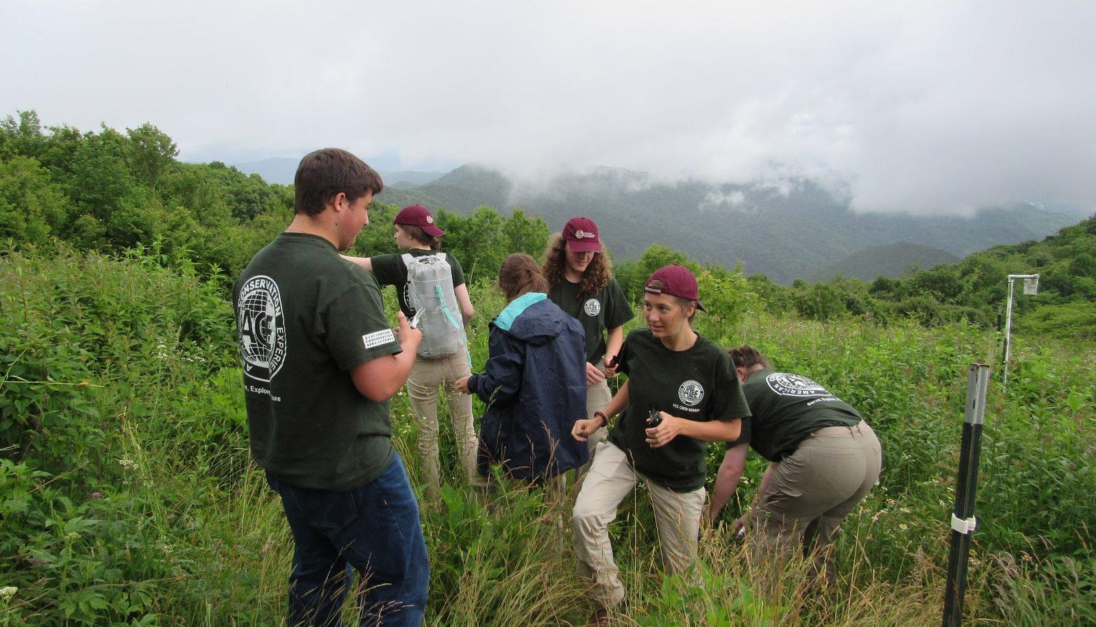 GSMNP interns in ozone garden