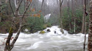 high water in the Middle Prong of the Little Pigeon River in the Greenbrier area of GSMNP on Feb. 6, 2020