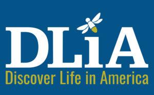 Discover Life in America logo