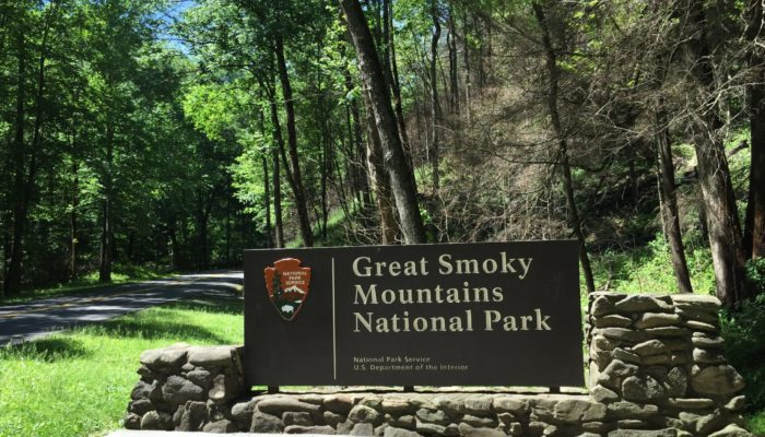 GSMNP entrance sign in summer