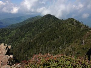 View atop Mt. Le Conte - photo by Julie Dodd