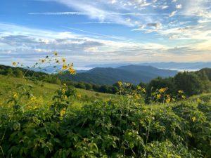 GSMNP mountain view