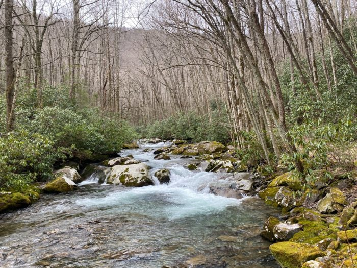GSMNP river view in fall