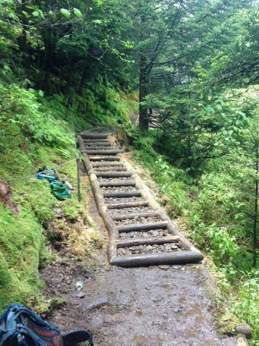 Trillium Gap Trail restoration - after