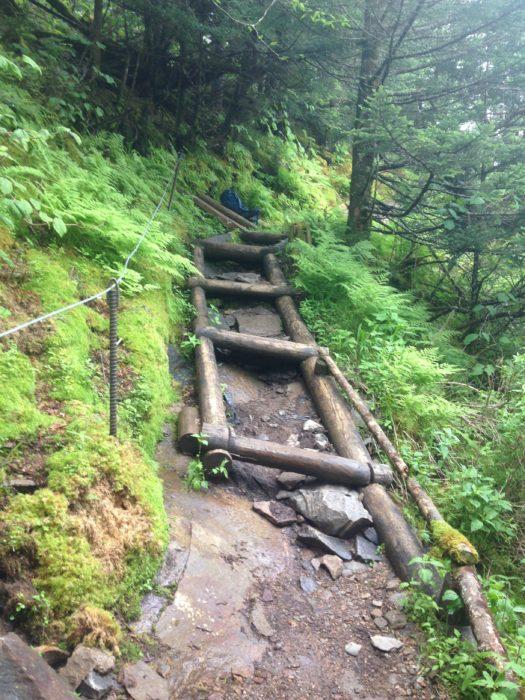 Trillium Gap Trail restoration - in progress