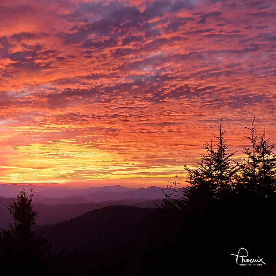 Blazing Sunset at Clingmans Dome by Phoenix. 12x12 on metal