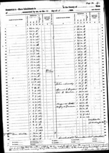 1860 Haywood County (NC) slave schedule