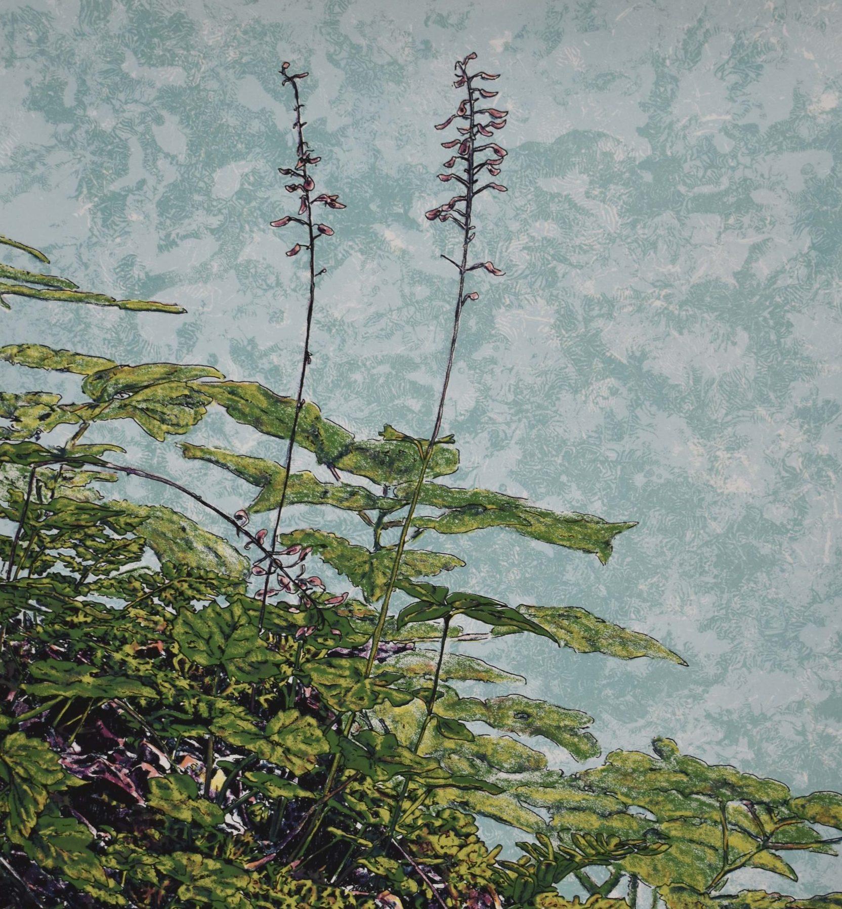 Kathy McGhee's Heartleaf Foamflower silkscreen print