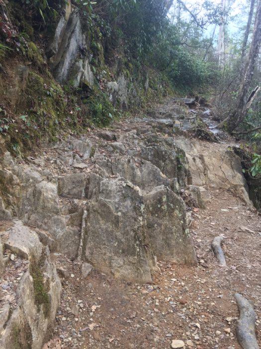 Abrams Falls Trail trail tread before repair