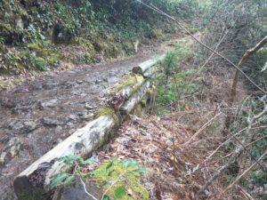 Abrams Falls Trail trail wall before repair