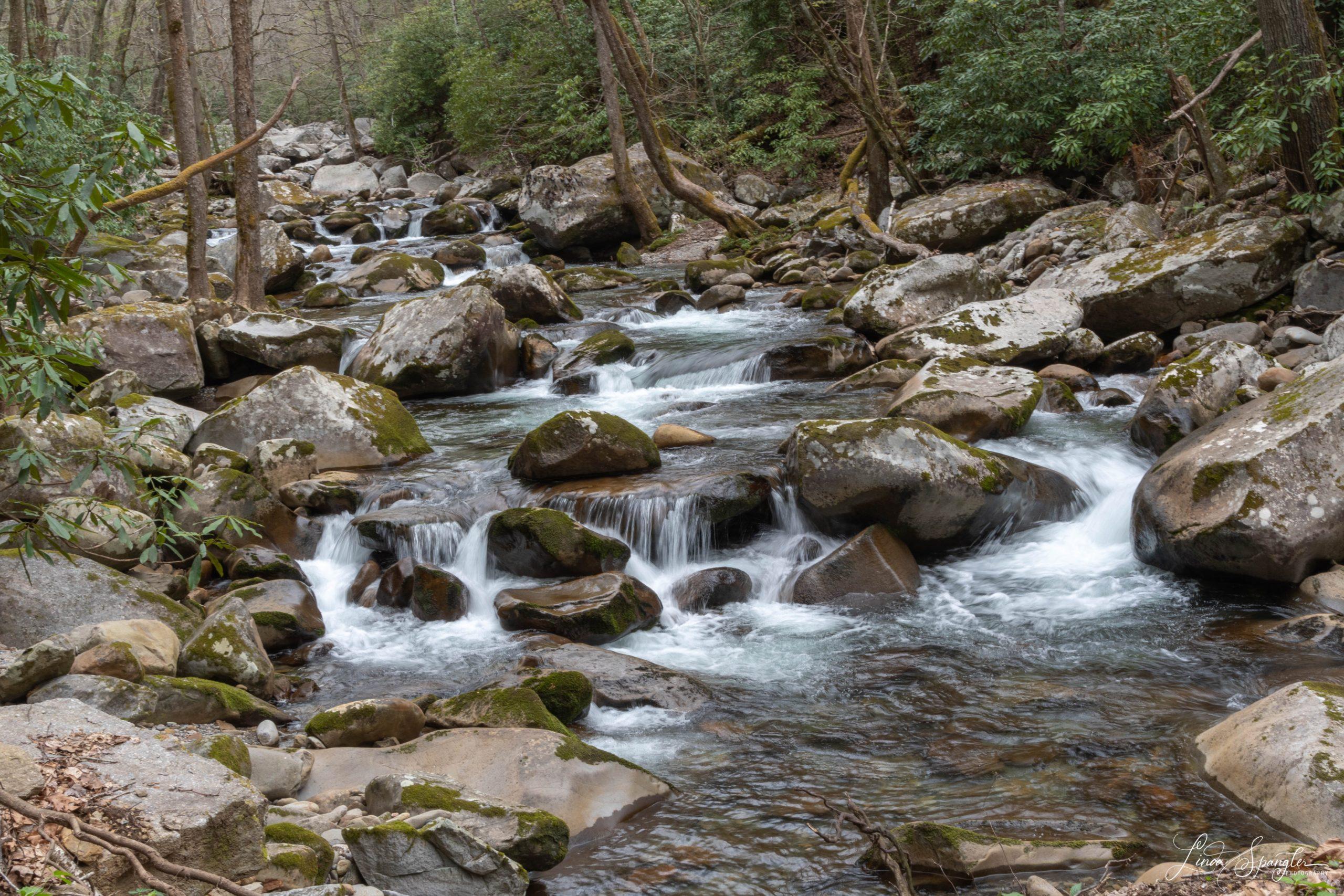 GSMNP Cascades