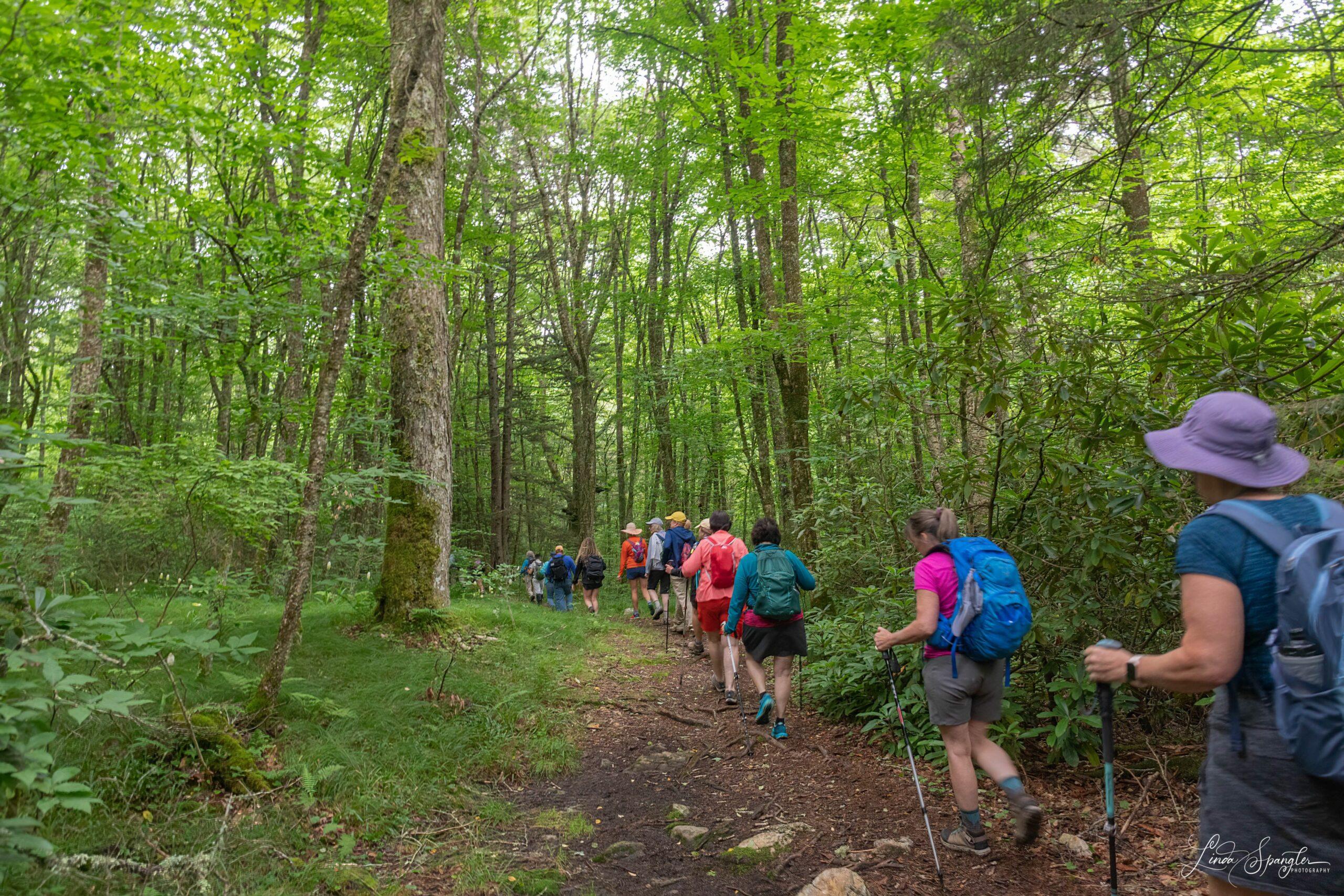 FOTS Classic Hike of Flat Creek Trail - group photo