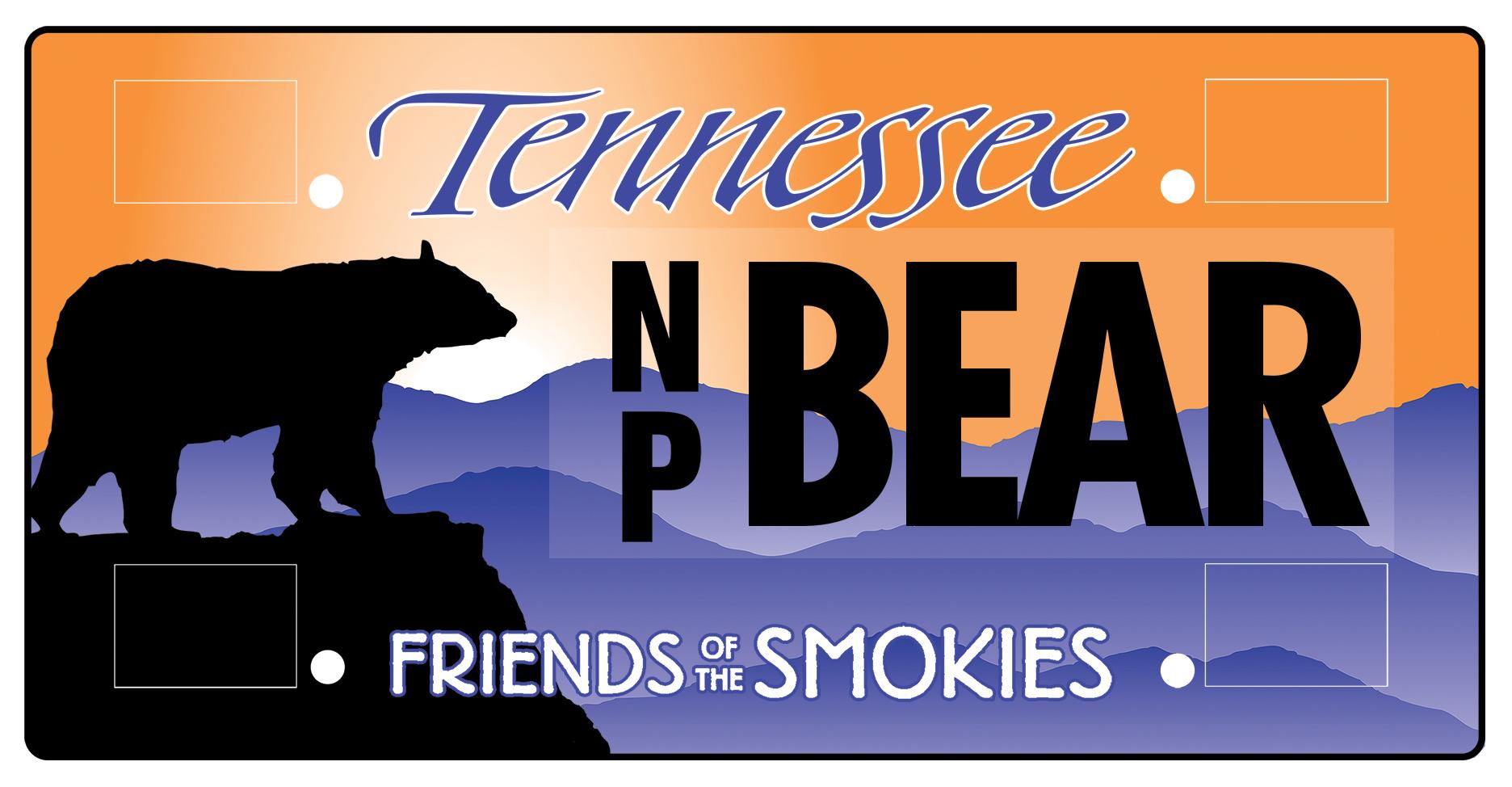 TN license plate